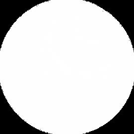 webinar circle 2.png