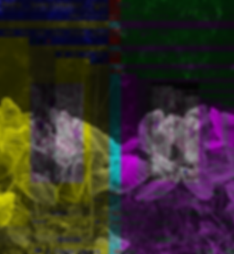 AI scans for organic lifeforms_edited.pn