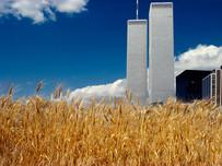 'Wheatfields' (1982), de cuando crecía el trigo en Manhattan