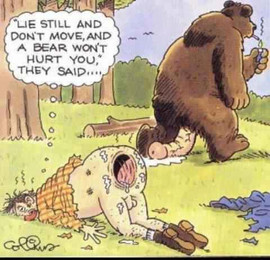 bear rape.jpg