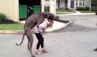 bitch with dog.jpg