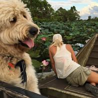 Hailey finds croc