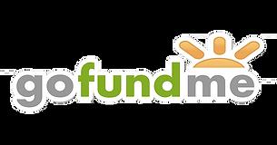 GoFundMe+Logo+PNG.png