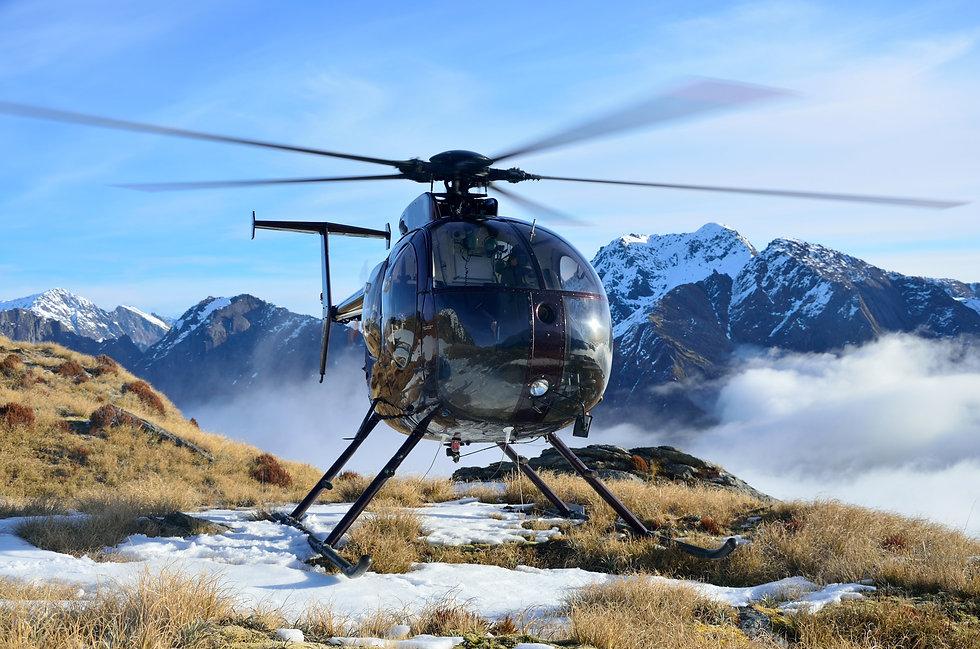 Activities in New Zealand