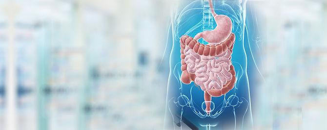 Gastroenterologista em Suzano