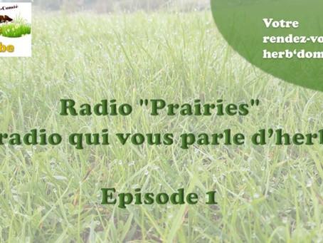 Radio PrairieS... Là où on vous parle d'herbe, de prairies et de pâturage