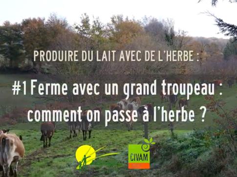 Vidéo #1 : Passer à l'herbe avec un grand troupeau