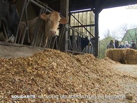 """Reportage JT de TF1: """"Surendettement : comment les agriculteurs s'entraident"""""""