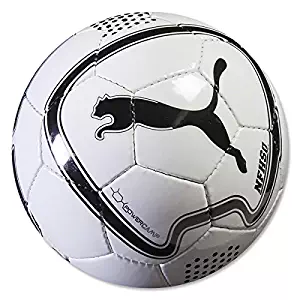 Puma Powercamp 2.0 Ball