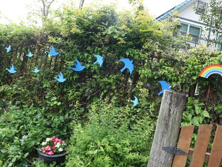 素敵な青い鳥