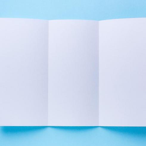 brochure (1).png