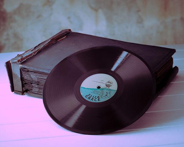 vinylmockup4.JPG