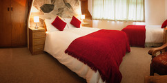Full & Twin Bed.jpg