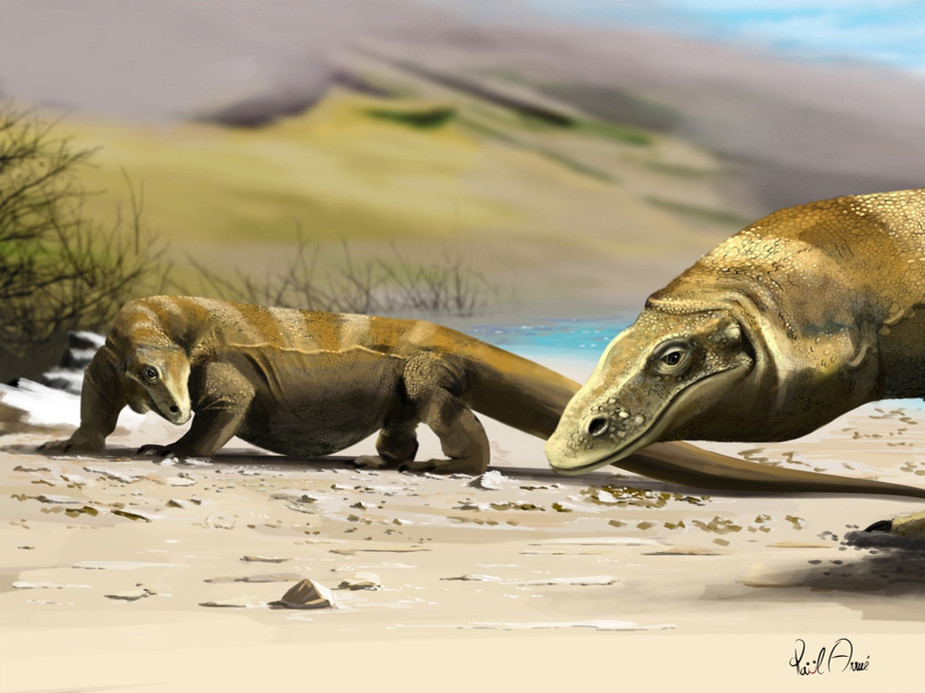 Arcanosaurus ibéricus