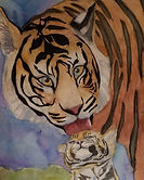 Tiger - age 11.jpg