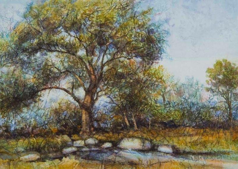 Valley Oak-Pleasanton California, Waterc