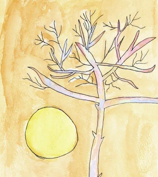 Tree at Sunset - age 7.jpg