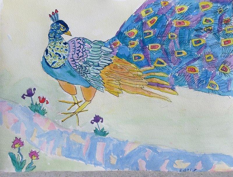 Peacock, Artist - Regan, Age 8.jpg