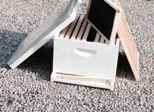 Langstroth 10 Frame Starter Hive