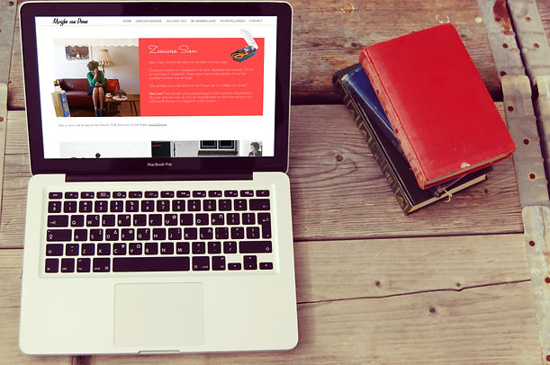 Website ontwerp Middelburg Zeeuwse Sien