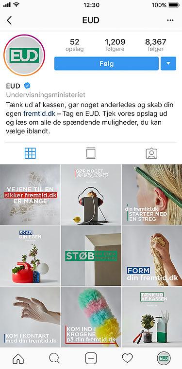 Instagram - Overblik.jpg
