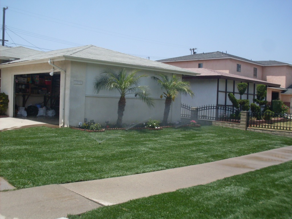 New Lawn and Sprinkler System