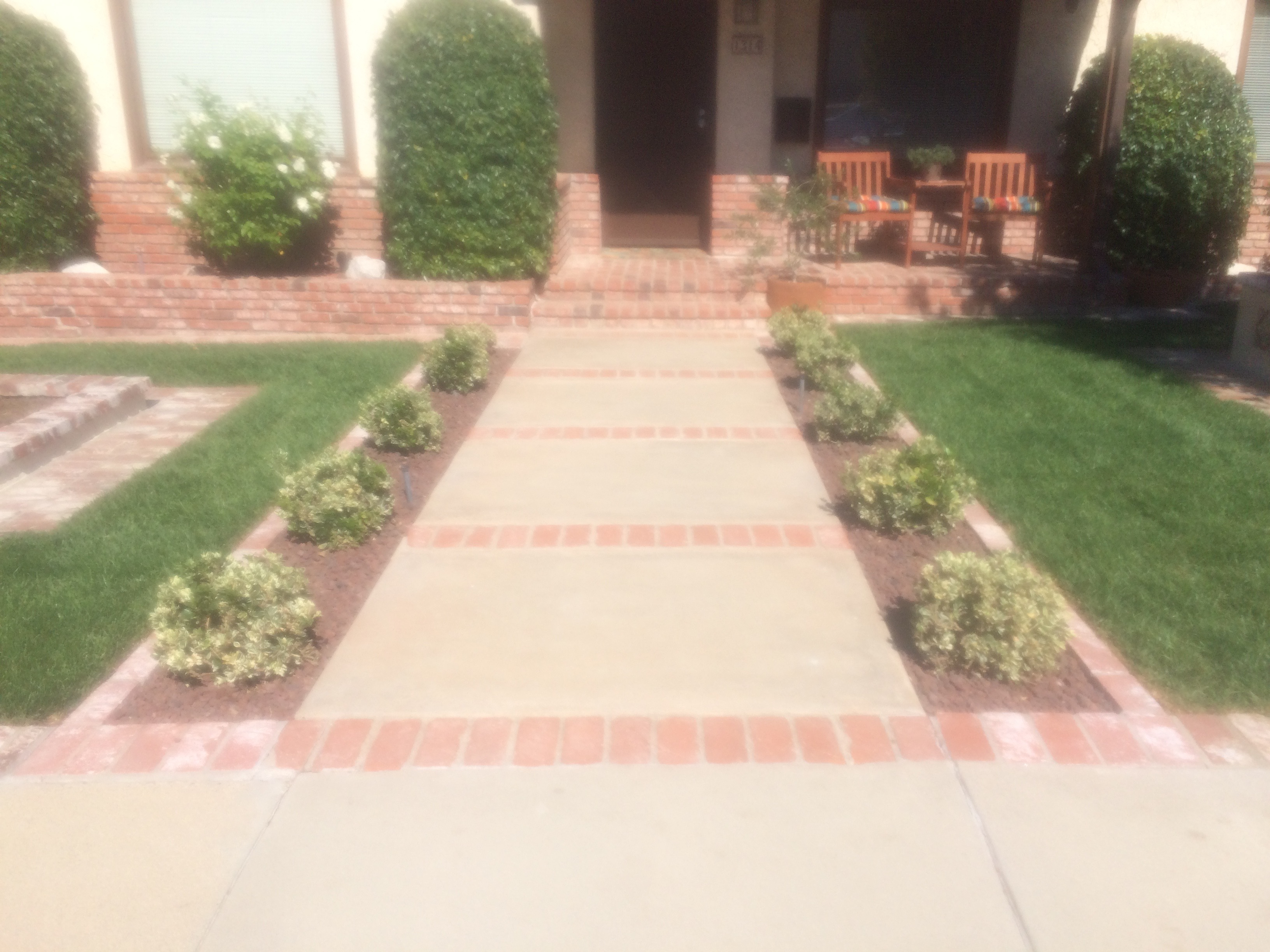 Path ways with brick and cement