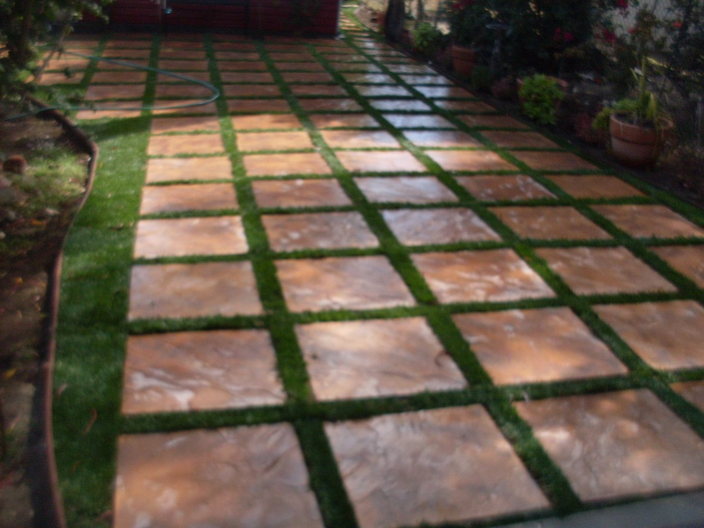 Stepping Stone Yard