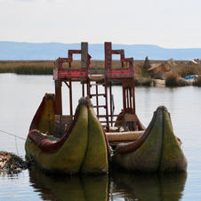 Life in the Reed - Titicaca