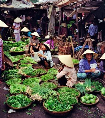 vietnam-pexels-jean-papillon-5681228.jpe