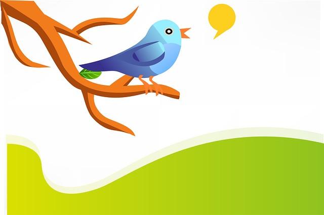 Twitter Lead Generation Strategies