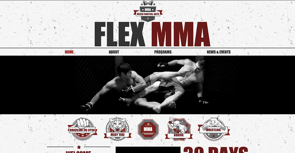 Mixed Martial Arts Website Template from Wix