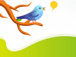 How to grow your Twitter following in 5 simple steps (infographic)