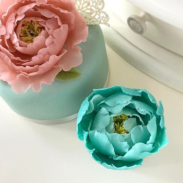 FEB25 Beanpaste Craft flower series