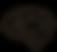 brain icon black.png