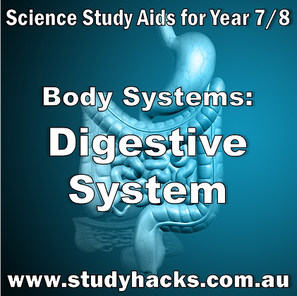 Year 7/8 Science Study Notes Body Systems Digestive System exam test quiz past papers half yearlys