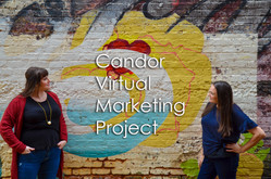 Candor Virtual Marketing Project