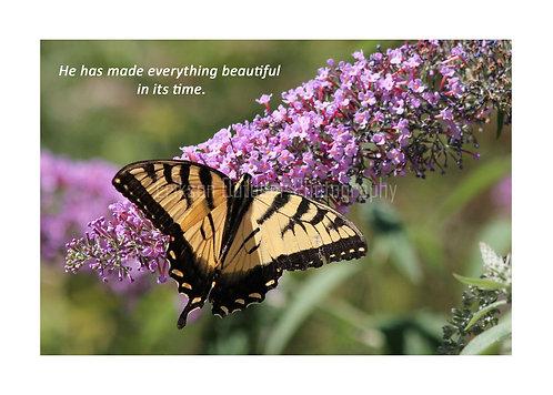 ESV Scripture greeting cards, Ecclesiastes 3:11