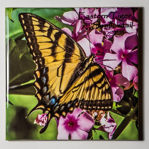 Ceramic Coaster or Trivet - Eastern Tiger Swallowtail