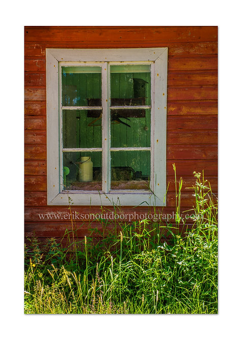 Window & Weeds Åland Islands, Finland, Cards and Prints