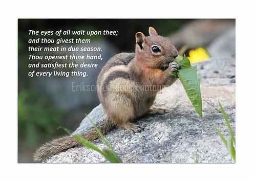 Scripture greeting card KJV, Psalm145:15&16