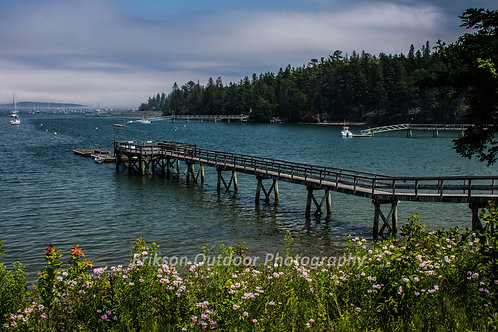 Dock in Somes Sound, Cards and Prints