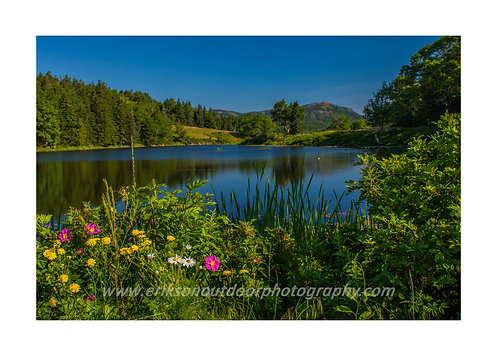 Little Long Pond, Mount Dessert Island, Maine, Cards and Prints