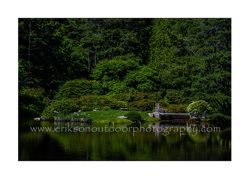 Asticou Pond, Northeast Harbor, Maine, Cards and Prints