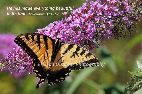 Ecclesiastes 3:11 | English or Spanish | Cards | Prints