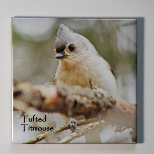 Ceramic Coaster or Trivet - Tufted Titmouse