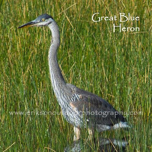 Ceramic Coaster or Trivet -Great Blue Heron