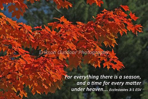 Ecclesiastes 3:1 | English or Spanish | Cards | Prints
