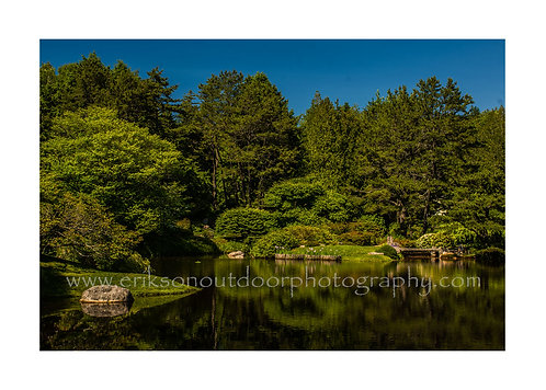 Asticou Pond #2, Northeast Harbor, Maine, Cards and Prints