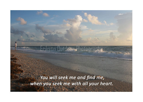 ESV Scripture greeting cards, Jeremiah 29:13